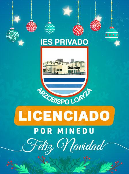 Navidad Loayzina
